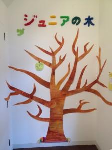 ジュニアの木